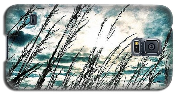 Ignation Galaxy S5 Case - Wasteland by Mark B