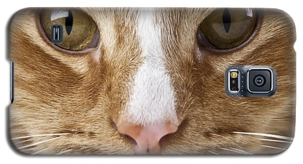 Watching And Waiting Galaxy S5 Case by Jeannette Hunt