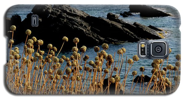 Galaxy S5 Case featuring the photograph Watching The Sea 1 by Pedro Cardona