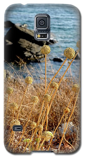 Galaxy S5 Case featuring the photograph Watching The Sea 2 by Pedro Cardona