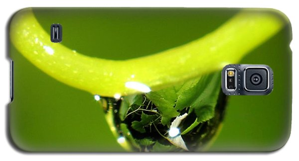 Water Droplet On Grapevine Galaxy S5 Case