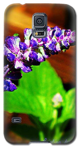 Water Drops Galaxy S5 Case