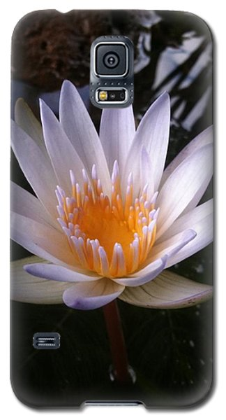Galaxy S5 Case featuring the photograph Water Lily by Carol Sweetwood