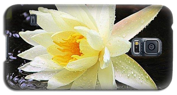 Water Lily In White Galaxy S5 Case by Elizabeth Budd