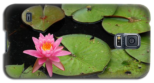 Galaxy S5 Case featuring the photograph Water Lily by Kay Lovingood