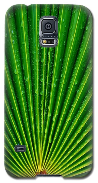 Waterdrops On Palm Leaf Galaxy S5 Case