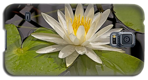 Galaxy S5 Case featuring the photograph Waterlily  by Anne Rodkin
