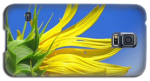 Waving Goodbye To Summer Galaxy S5 Case