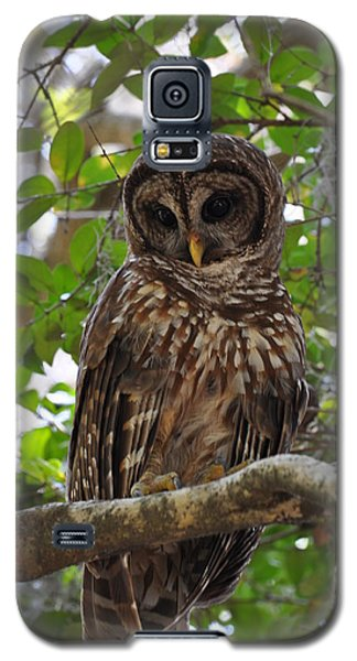 Galaxy S5 Case featuring the painting We Call Her Janice by AnnaJo Vahle