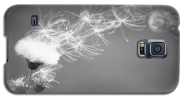 Galaxy S5 Case featuring the photograph Weed In The Wind by Deniece Platt