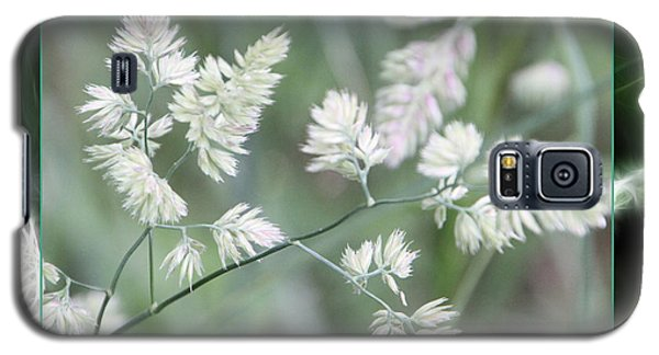 Galaxy S5 Case featuring the photograph Weeds by EricaMaxine  Price
