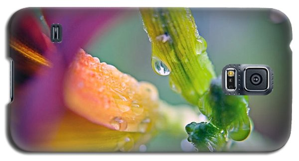 Galaxy S5 Case featuring the photograph Wet Lily by Susan Leggett