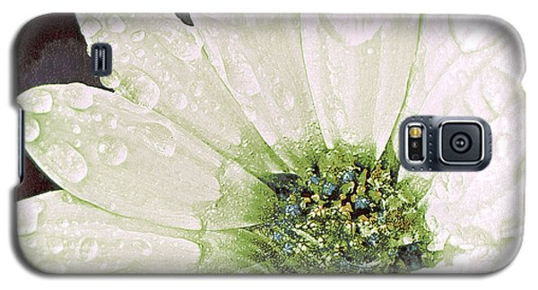 Wet Petals Galaxy S5 Case by Artist and Photographer Laura Wrede