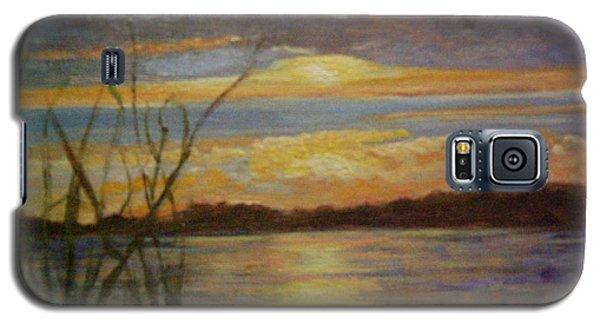 Wetland Galaxy S5 Case