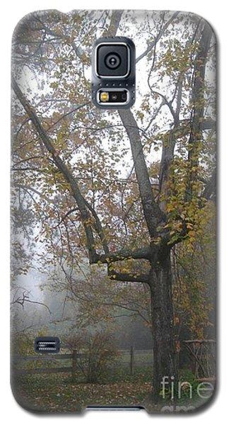 What I Saw  Galaxy S5 Case by Nancy Dole McGuigan