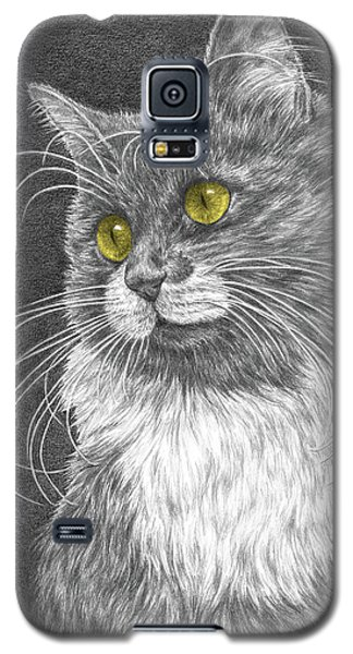 Galaxy S5 Case featuring the drawing Whiskers - Color Tinted Art Print by Kelli Swan