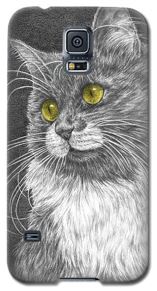 Whiskers - Color Tinted Art Print Galaxy S5 Case