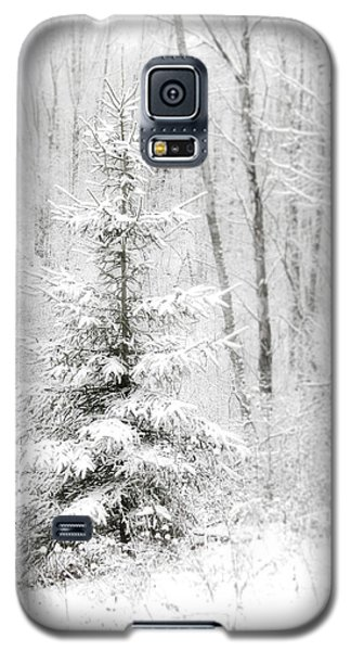 Whispers The Snow Galaxy S5 Case by Angie Rea