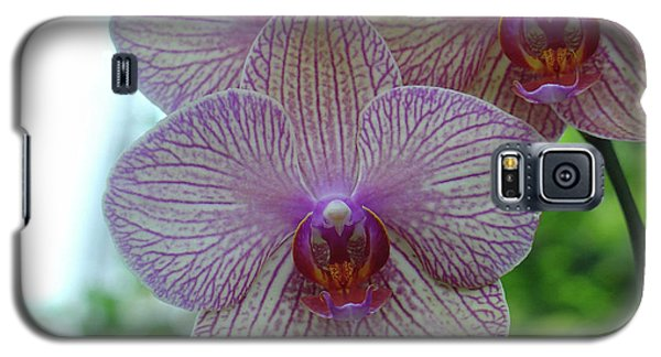 White And Pink Orchid Galaxy S5 Case