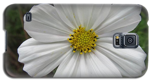 Galaxy S5 Case featuring the photograph White Beauty by Tina M Wenger