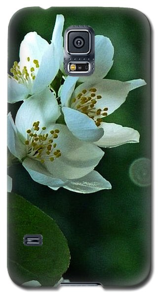 Galaxy S5 Case featuring the photograph White Buds And Blossoms by Steve Taylor