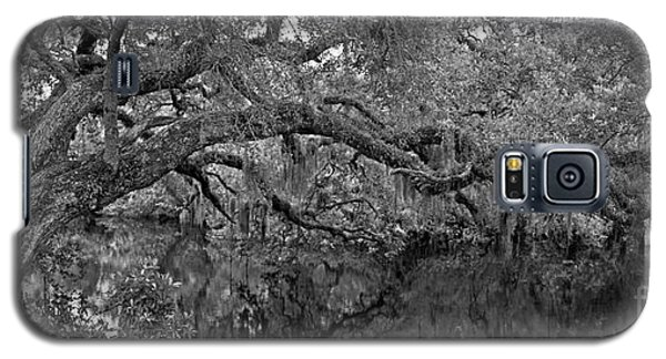Galaxy S5 Case featuring the photograph White City Oak Pano by Larry Nieland