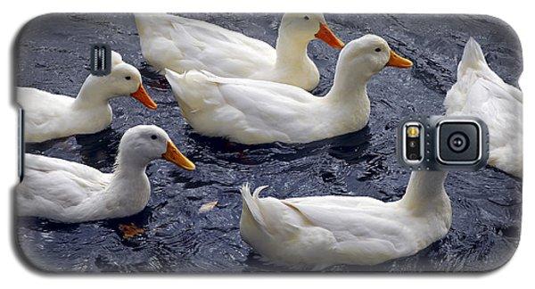 White Ducks Galaxy S5 Case by Elena Elisseeva