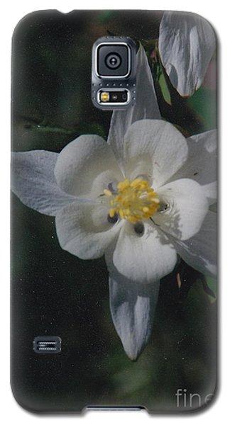 White Flower Splendor Galaxy S5 Case