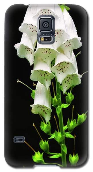 Galaxy S5 Case featuring the photograph White Foxglove by Albert Seger