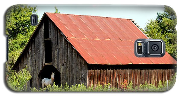 Galaxy S5 Case featuring the photograph White Horse Waiting by Kathy  White