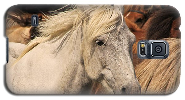 White Icelandic Horse Galaxy S5 Case
