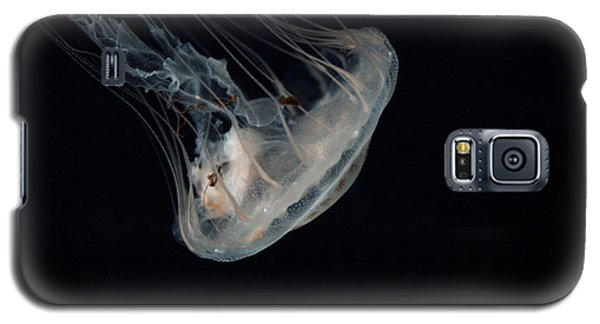 White Jelly In Black Space Galaxy S5 Case