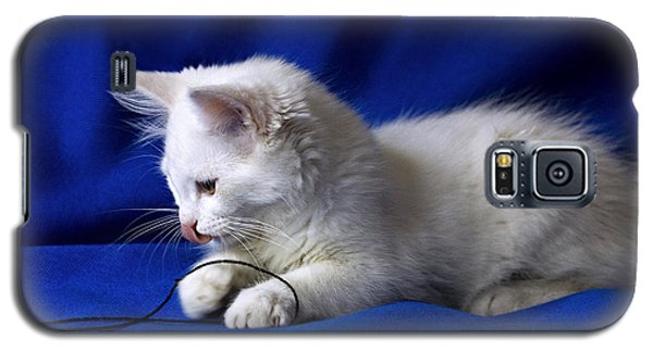 White Kitty On Blue Galaxy S5 Case