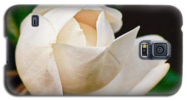 Galaxy S5 Case featuring the photograph White Magnolia Unfolding by Ann Murphy