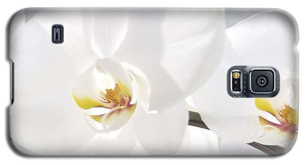 Galaxy S5 Case featuring the photograph White Orchid by Cindy Lee Longhini