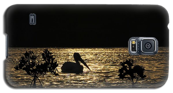 Galaxy S5 Case featuring the photograph White Pelican Evening by Dan Friend