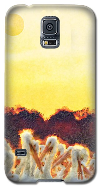 Galaxy S5 Case featuring the photograph White Pelicans In Sun by Dan Friend