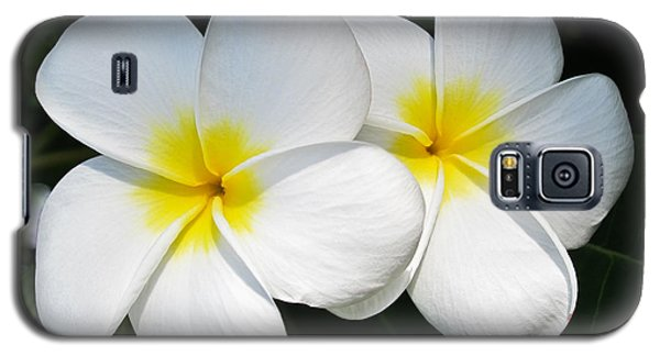 White Plumerias Galaxy S5 Case