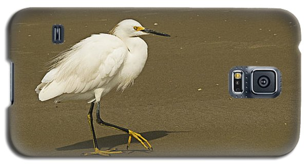 White Seabird Walking Galaxy S5 Case by Barbara Middleton