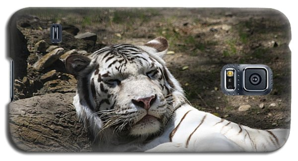 White Tiger Galaxy S5 Case