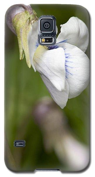 White Violet Macro Galaxy S5 Case