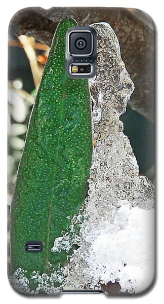 Galaxy S5 Case featuring the photograph White Wedding by Steve Taylor