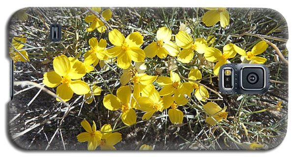 Galaxy S5 Case featuring the photograph Wild Desert Flowers by Kume Bryant