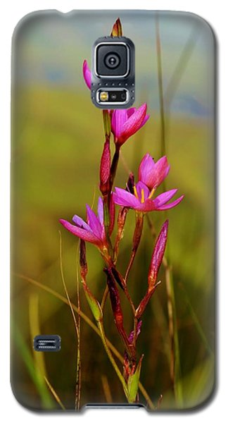 Galaxy S5 Case featuring the photograph Wild Flower by Werner Lehmann