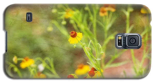 Galaxy S5 Case featuring the photograph Wild Flowers by Joan Bertucci