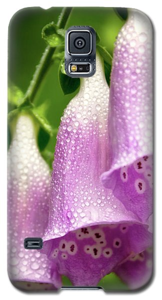 Galaxy S5 Case featuring the photograph Wild Foxglove by Albert Seger