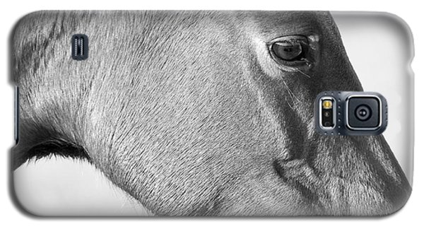 Wild Horse Intimate Galaxy S5 Case by Bob Decker