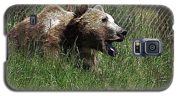 Wild Life Safari Bear Galaxy S5 Case