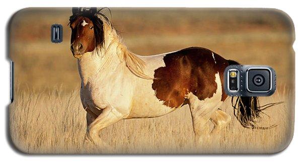 Wild Mustang Stallion Galaxy S5 Case