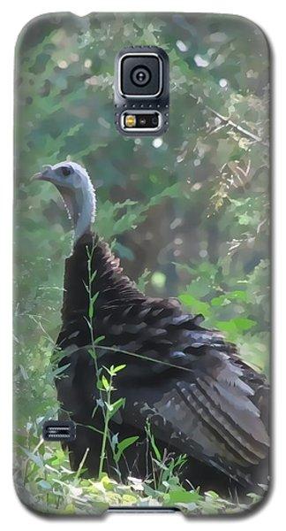 Galaxy S5 Case featuring the digital art Wild Turkey 6380 3x4 by Maciek Froncisz